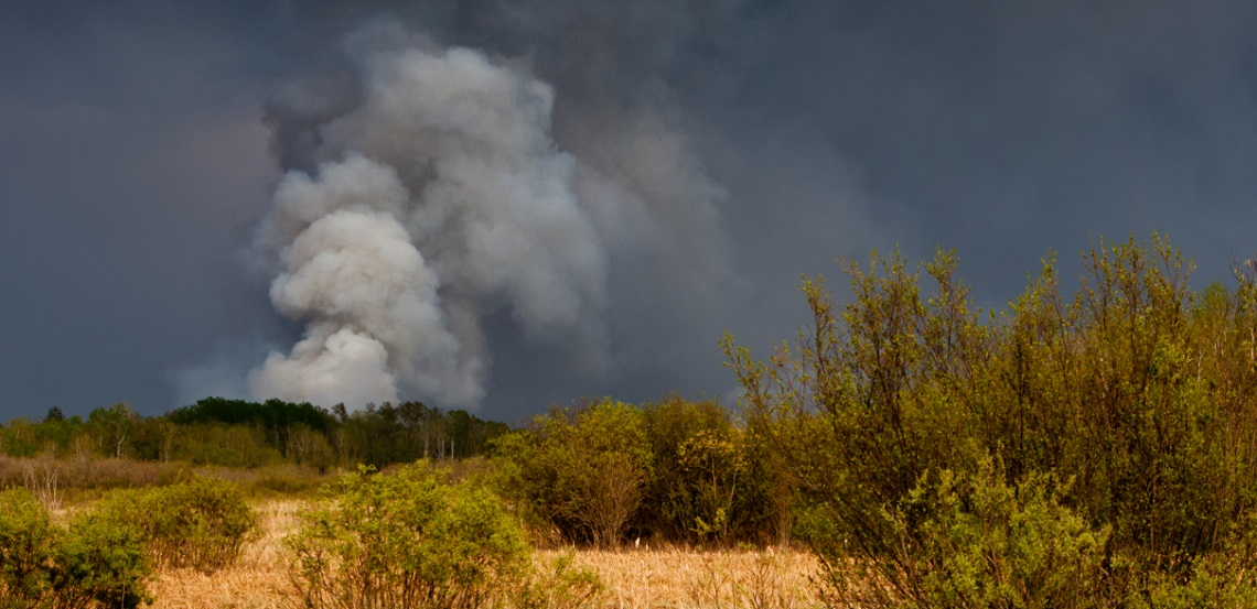 Is Your Home and Property Protected from Wildfires?