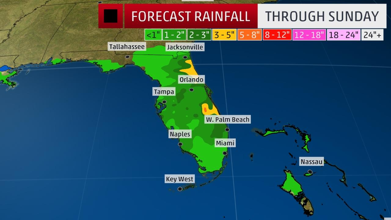 Wet weather in store for Florida through the weekend